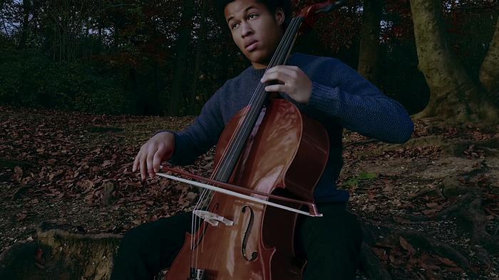 13 The Swan Arr Cello Harp  Ensemble