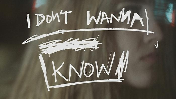 I Dont Wanna Know Lyric Video