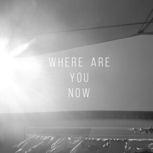 Where Are You Now Songs Download Where Are You Now Songs Mp3 Free Online Movie Songs Hungama