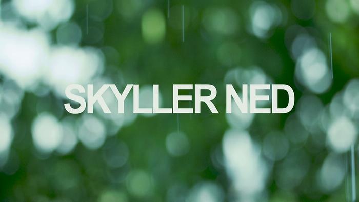Skyller Ned feat Charlie Skien