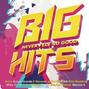 Turn Down For What Song Turn Down For What Song Download Turn Down For What Mp3 Song Free Online Big Hits Never Felt So Good Songs 2015 Hungama