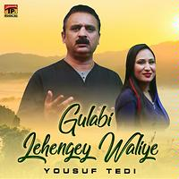 yousuf tedi all song mp3 free download