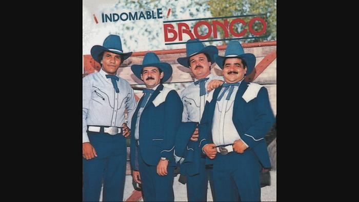 Los Vicios Cover Audio