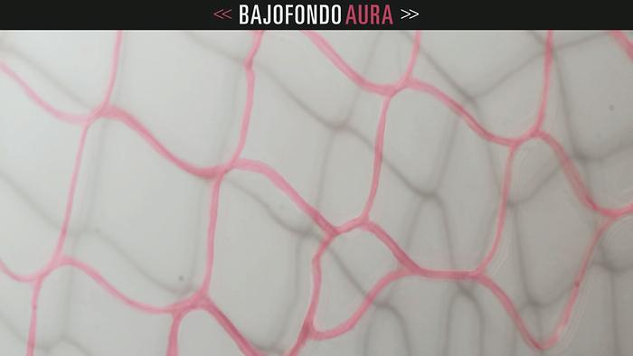 Aura Cover Audio