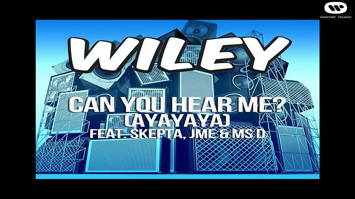 Can You Hear Me ayayaya ft Skepta JME  Ms D