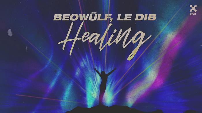 Healing Pseudo Video