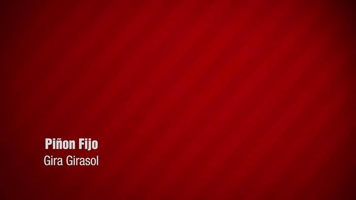 Gira Girasol Lyric Video