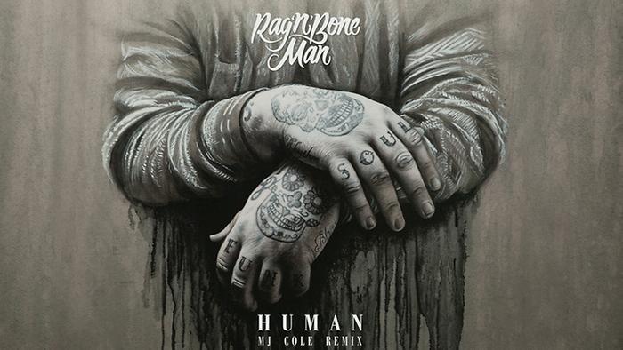 Human MJ Cole Remix Audio
