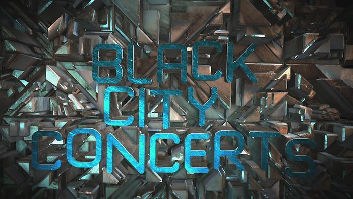 Ouverture Black City Concerts au Stade de France 2014