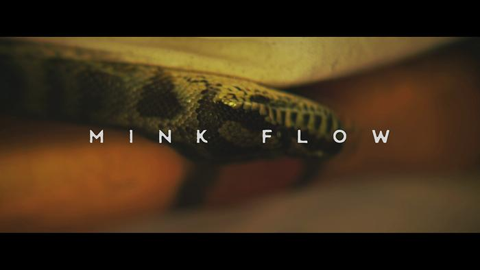 Mink Flow Official Music Video