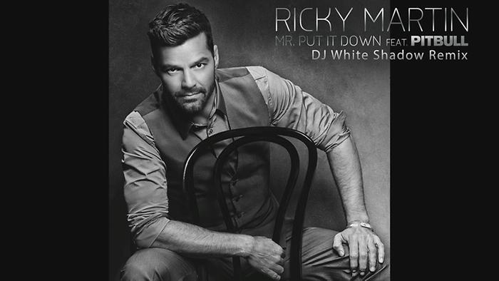 Mr Put It Down DJ White Shadow RemixCover Audio