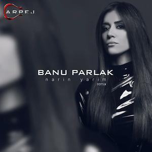 Narin Yarim Remix Song Download Narin Yarim Remix Mp3 Song Download Free Online Songs Hungama Com