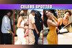 Shahrukh Khan At Gateway - Alia Bhatt,Shilpa Shetty On Location - Kiara Varun Stars Spotted