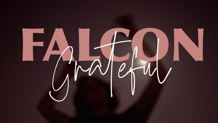 Grateful Official Lyric Video