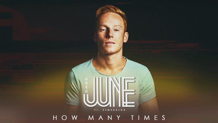 How Many Times Lyrics Video