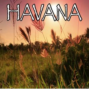 Havana Tribute To Camila Cabello And Young Thug Song Havana Tribute To Camila Cabello And Young Thug Mp3 Download Havana Tribute To Camila Cabello And Young Thug