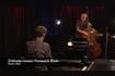 Zimbaterranean Homesick Blues (Live)