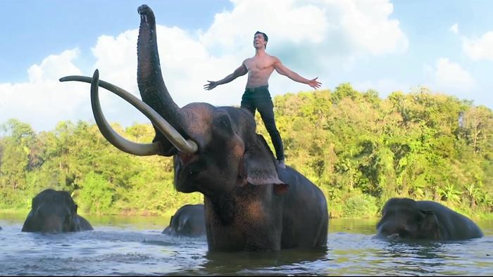 Junglee  Trailer