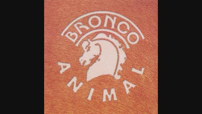 Animal Cover Audio