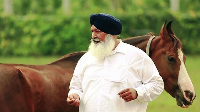 Jatt  Horses