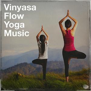 Vinyasa Flow Yoga Music Songs Download Vinyasa Flow Yoga Music Songs Mp3 Free Online Movie Songs Hungama