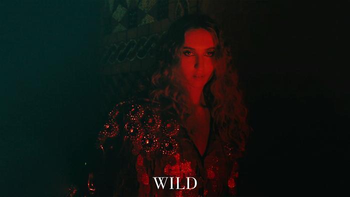 Wild Audio