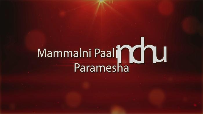 Mammalni Paalinchu Lyric Video
