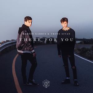 martin garrix there for you mp3 free download