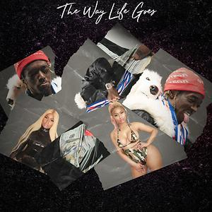 the way life goes free mp3 download