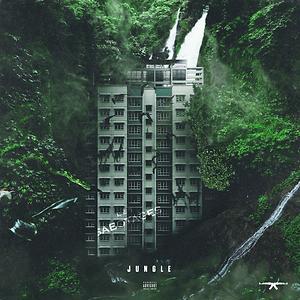 Jungle music mp3