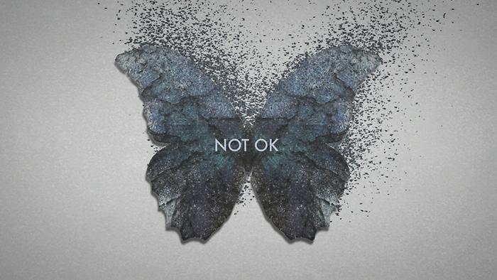 Not Ok Lyric Video